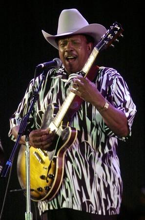 Chicago Blues Fest 2004