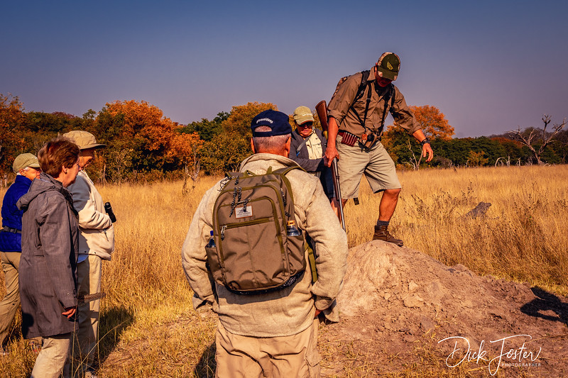 Walking Safari at Hwange Safari Lodge
