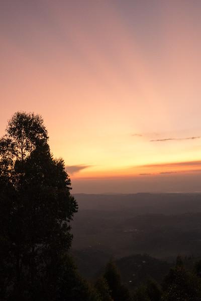 Nyugwe-Rwanda-5.jpg