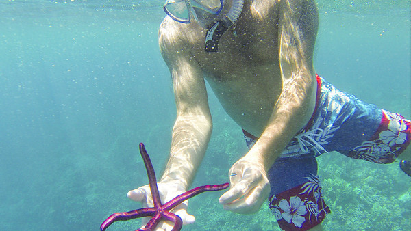 Gemini Snorkel with Will
