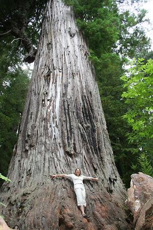 Oregon & California - August 2007