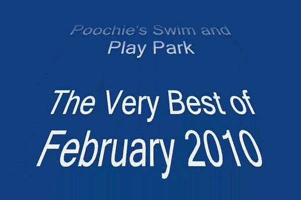 Best of February Music Video