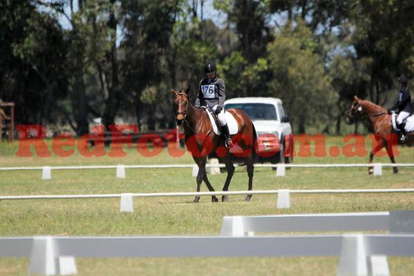 2014 11 15 Capel Pony Club ODE Dressage 09-40 till 11-00