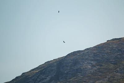 Isle Of Mull Sep 2014