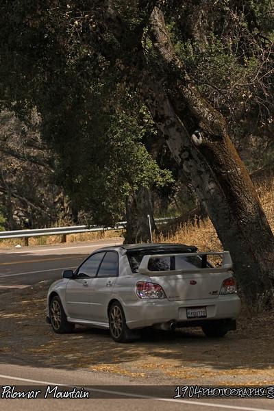 20090606_Palomar Mountain_0114.jpg