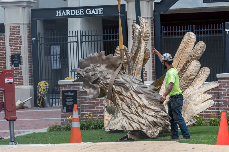 Christopher Cameron, of D and T Steel gives the tumps up to lift the head of an 800 square-foot gamecock sculpture outside of Williams-Brice Stadium in center of the Lloyd Family Courtyard, on Sept. 10, 2020. John A. Carlos II / Special to The Post and Courier