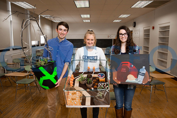 Sustainability Art Project