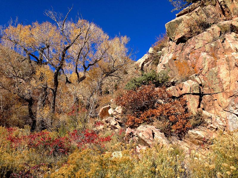 Waterton Canyon 008.jpg