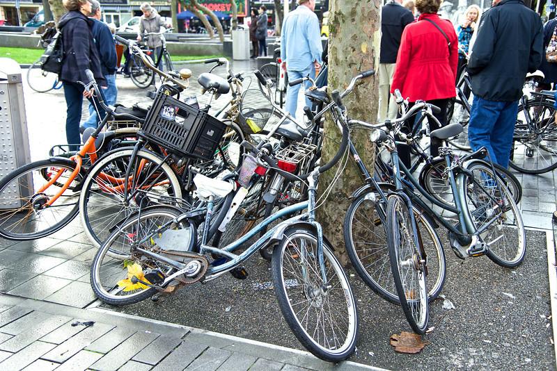 GM~Amsterdam, Netherlands~2013 4975