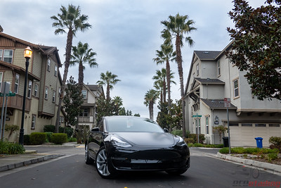 Model 3 - Front End PPF and Matte Full Hood XPEL Stealth