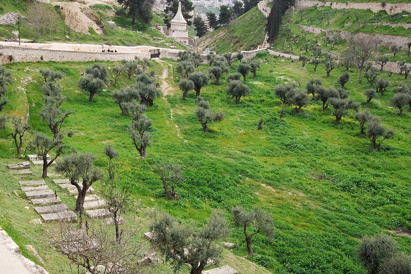 Looking down the Kidron Valley.jpg