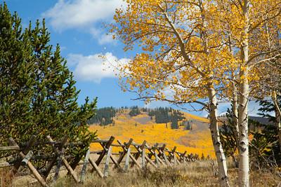 Colorado in Autumn