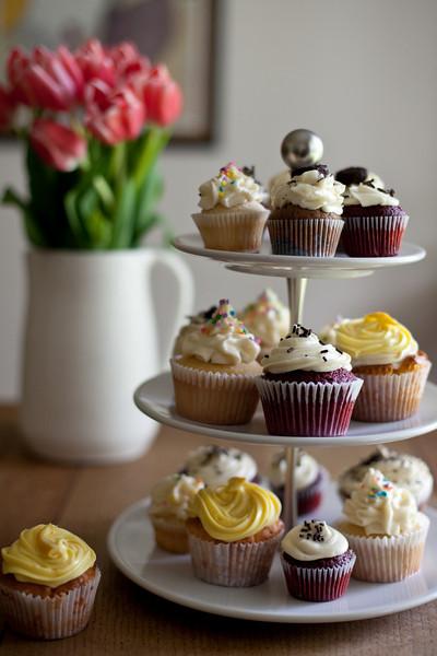 Cupcakes-003.jpg