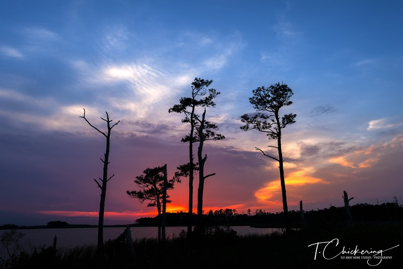 Blackwater Sunset Three-1558396816253.jpg