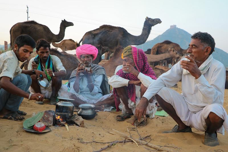 India-Pushkar-2019-6624.jpg