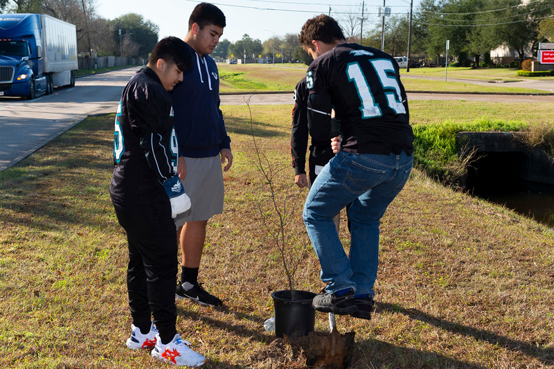 Tree Planting_Crenshaw_Preston__2020_040.jpg