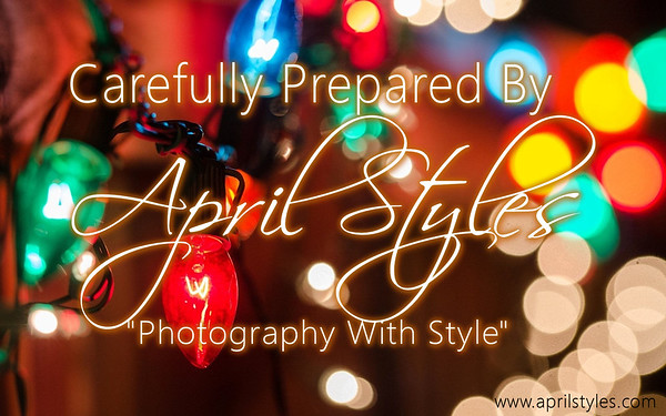 Pueblo County Courthouse / Christmas Lighting Ceremony / Santa Portraits by April Styles