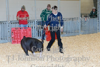 2016 KISD Swine Class 5