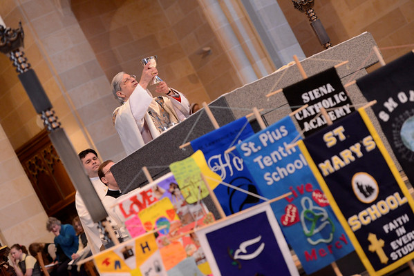 2017 Catholic Schools Week