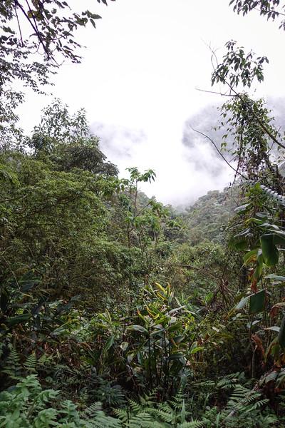 Ecuador-113.jpg