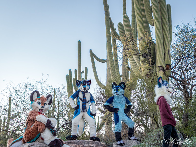 Arizona New Years 2019-055-HDR-Edit.jpg