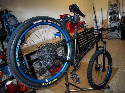 2020-08-01 Roscoe Spank Wheels SLX Brakes