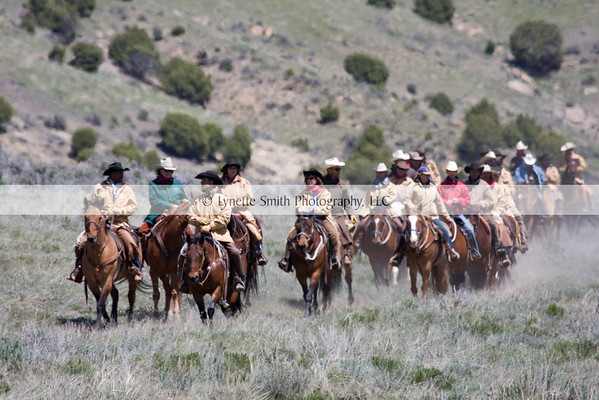 Horse Drives and Wild Horses