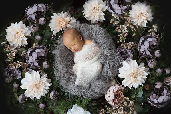 Kenzie - newborn