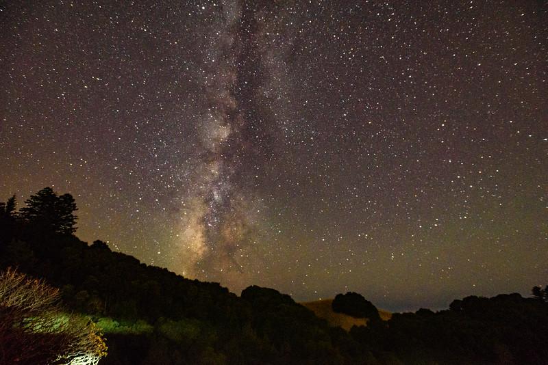 Skyline Stars
