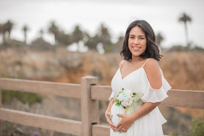 Maternity Shoot-1098.jpg