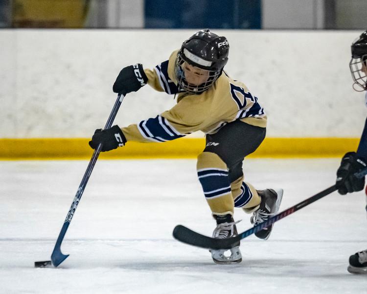 2018-2019_Navy_Ice_Hockey_Squirt_White_Team-58.jpg