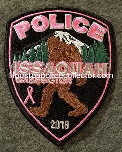 Pink Washington