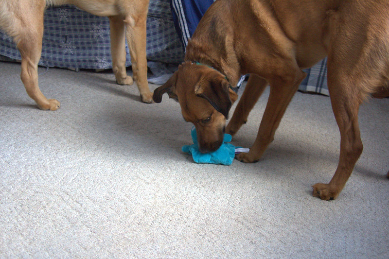 Jack gets a present also.