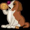 dog-saint-bernard-icon.png