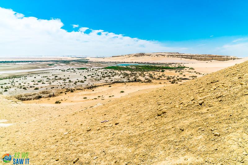 Wadi-El-Hitaan-02520.jpg