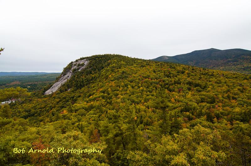 NH Foliage-12.jpg