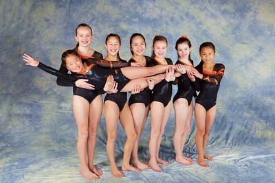 Team 2014 - Optionals