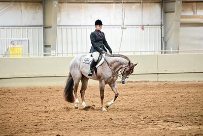 Novice Amateur Equitation