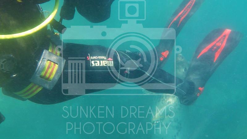 Lundy Island Edit.Still101.jpg