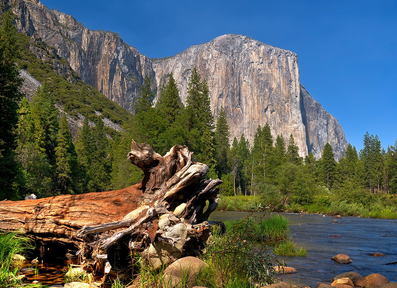 Yosemite - El Capitan from Pohono Bridge.jpg