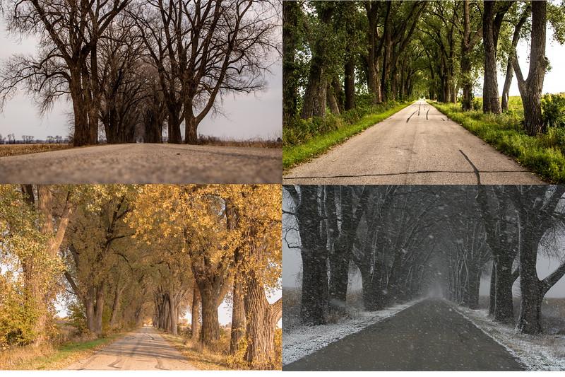 Weary Road 4 seasons.jpg
