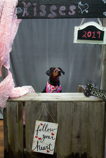 GDU Kissing Booth 2019-5.jpg
