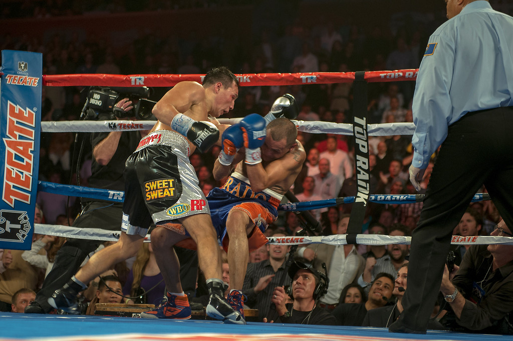 . BROOMFIELD, CO. - October 19: Mike Alvarado is knocked to the ground for the first time after taking huge shots against Russian Ruslan Provodnikov at the 1st Bank Center October 19, 2013 Broomfield, Colorado. (Photo By Joe Amon/The Denver Post)