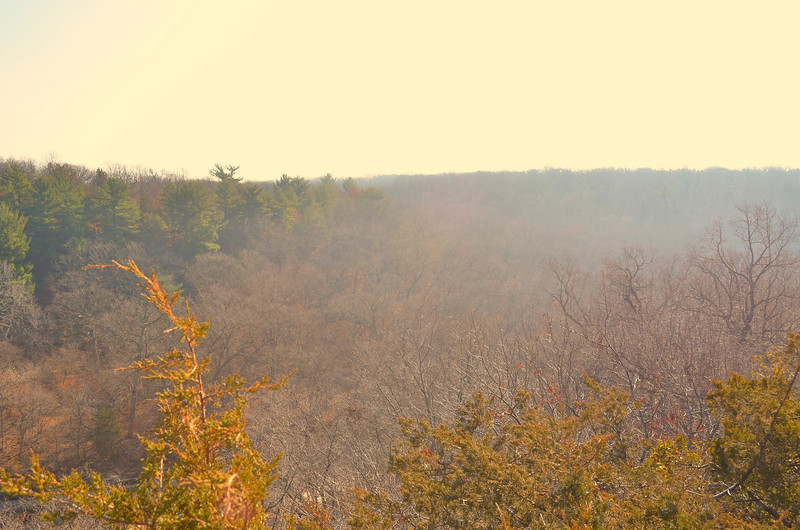 Erin's Starved Rock Nov 2012