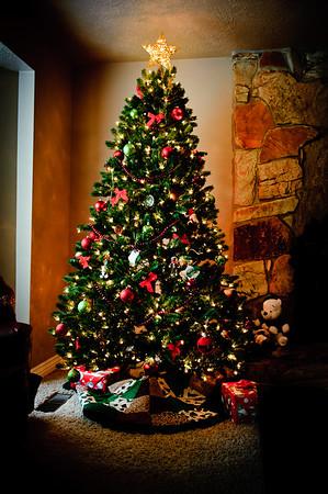 Jackson Family Mini-Session Dec 2010