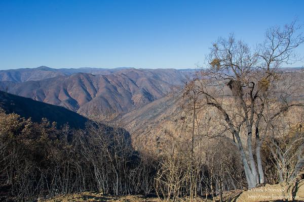 2013-USA-CA-Eastern Sierras