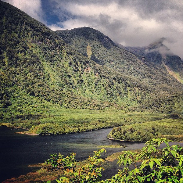 Lush at the end of the world: Doubtful Sound, Fiordland