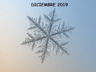 DICIEMBRE 2019