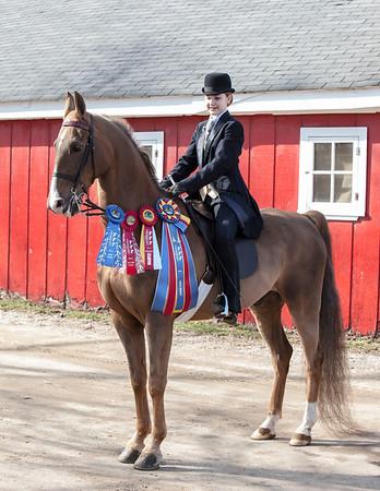 NTRA-Spring Horse Show 2014