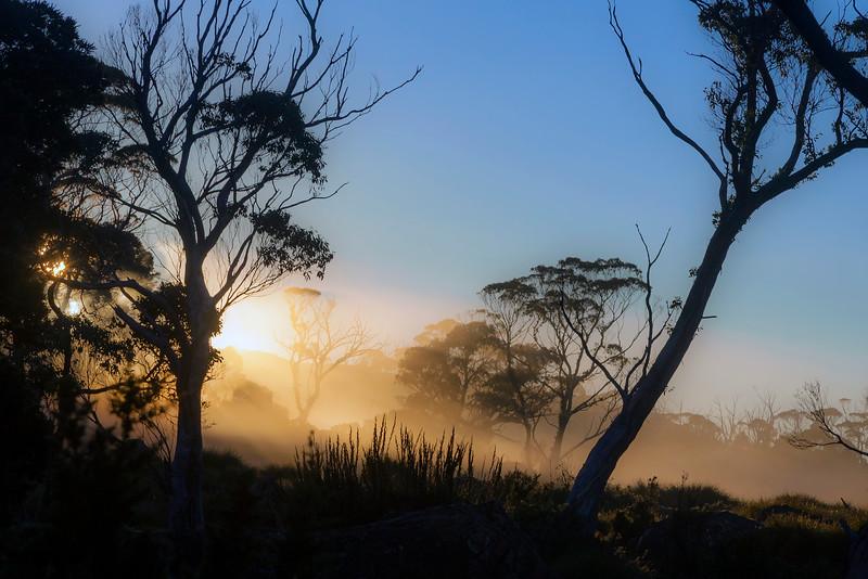 Morning Fog at Lake Windermere